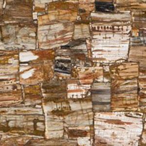 Petrified-Wood-Classic